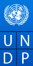 United Nations MDG